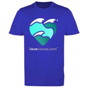 Men's t-shirt royal blue large logo