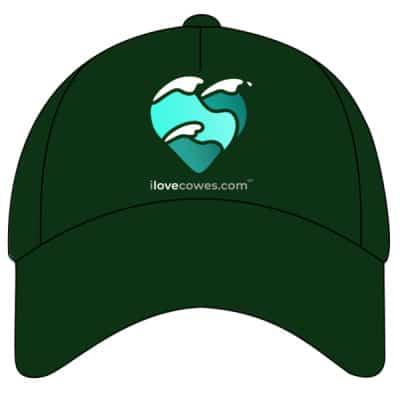 CAP BOTTLE GREEN