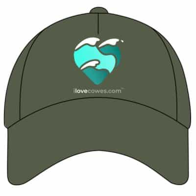 CAP OLIVE